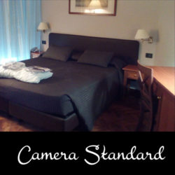 Camera Standard